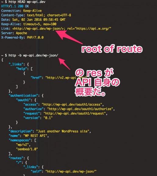 WPサイトの任意のURLにアクセスした時にLINK ヘッダーを確認した時のURLにもう一度GETでリクエストすると authentication を含む諸々の情報がもらえる
